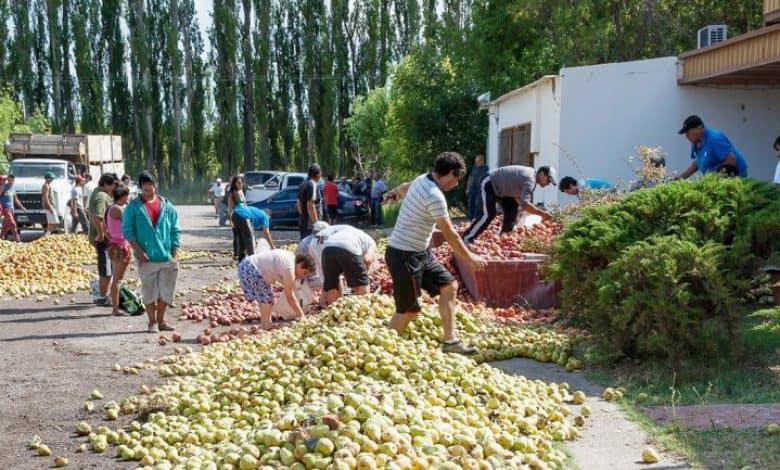 Regalarán peras y manzanas en Plaza de Mayo en reclamo por las economías regionales 1