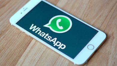 Se podrán denunciar por WhatsApp irregularidades en la elección 26