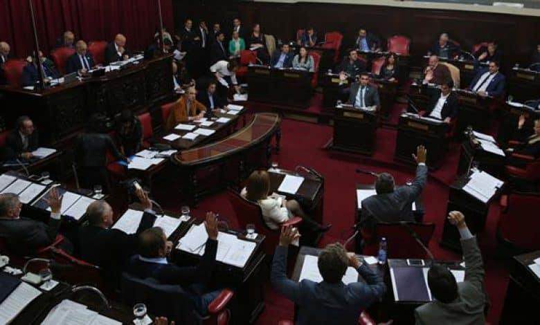 Por ley, los intendentes y concejales no podrán ser reelegidos indefinidamente 1