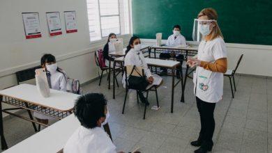 Ya se decidió el orden en que serán vacunados los y las docentes 30