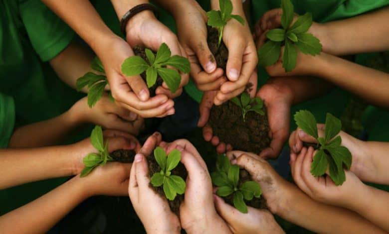 Diputados busca debatir en sesión extraordinaria la Ley de Educación Ambiental 2