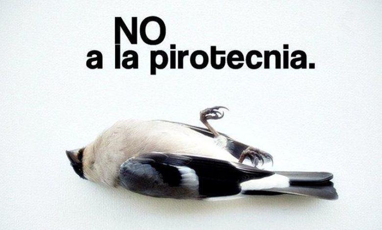 El Municipio prohibió la pirotecnia en Parque Leloir, Barrio Aeronáutico e Ituzaingó Sur 2