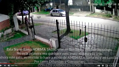 Barrio Villa León - Vecina descarta mascotas muertas 19