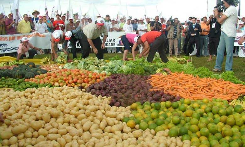 Taller de Soberanía Alimentaria para saber qué comemos y de dónde viene 2