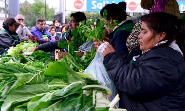 Verduras a precios populares en reclamo de la producción nacional y la agricultura familiar 2